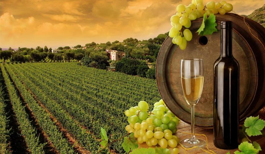 Πως η κλιματική αλλαγή θα ευνοήσει το ελληνικό κρασί; | Rethemnos News