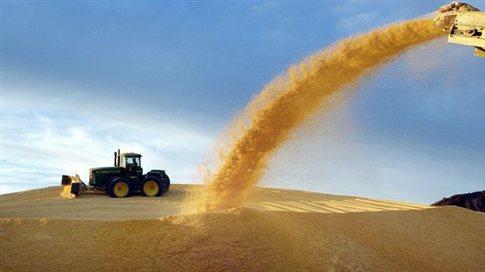 Το γαλλικό ΣτΕ ανατρέπει την απαγόρευση στην καλλιέργεια «μεταλλαγμένων»