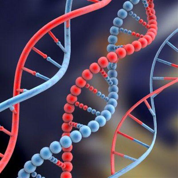 (Ξανά)γέννησαν τα μόρια της ζωής