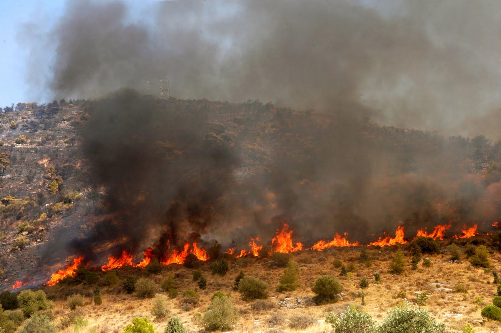 Ρέθυμνο: Αυξημένος κίνδυνος εκδήλωσης πυρκαγιών σήμερα Fwtia1
