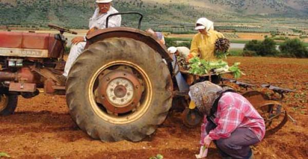 «Μας Κοροϊδεύουν! Οι καταχρεωμένοι αγρότες δε σώζονται με ψίχουλα!»