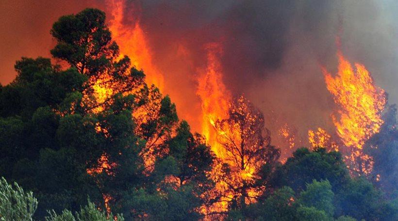 Ρέθυμνο: Υπό μερικό έλεγχο η φωτιά