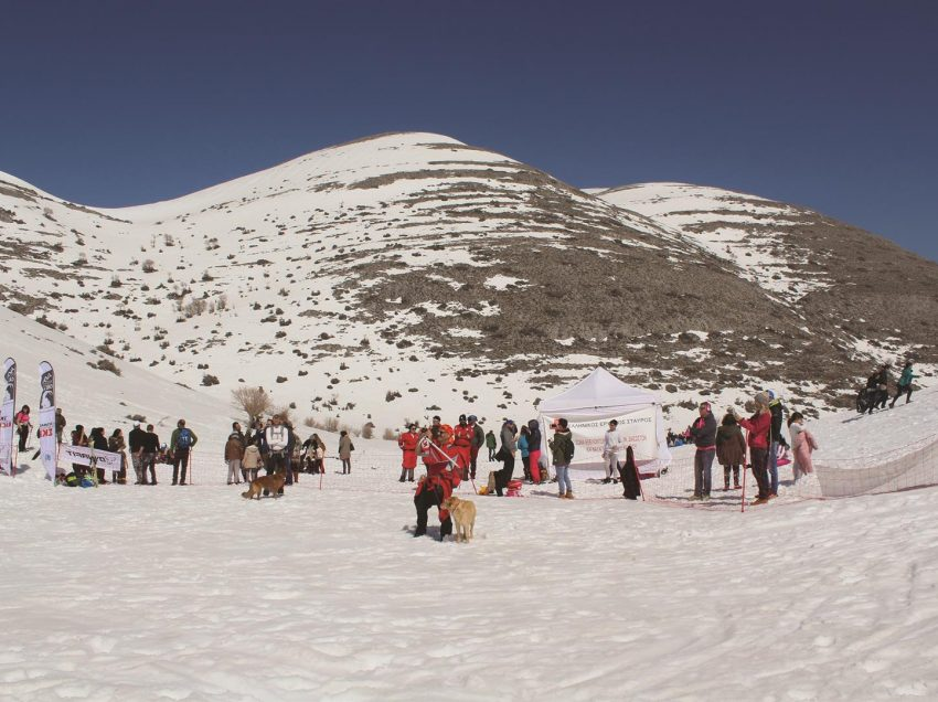 Θεσμός οι νοτιότεροι αγώνες ορειβατικού σκι στην Ευρώπη!
