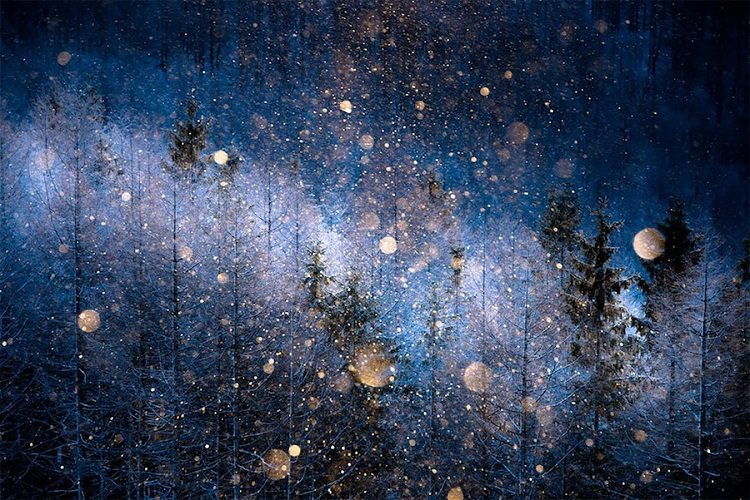 Υπέροχες εικόνες από το διαγωνισμό φωτογραφίας της Sony