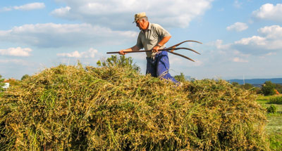Από το 2025 και μετά θα ισχύσει ο κόφτης στις συντάξεις αγροτών που συνεχίζουν να καλλιεργούν