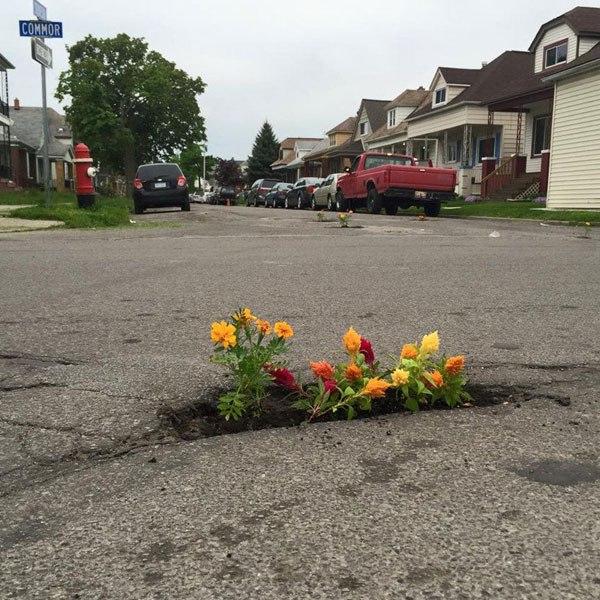 Κάτοικοι φυτεύουν λουλούδια στις λακκούβες των δρόμων