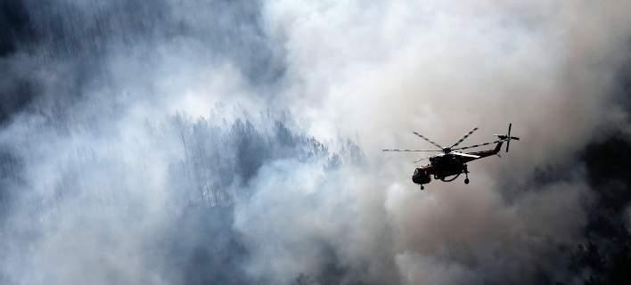 WWF Ελλάδας: Η χώρα αντιμετωπίζει τριπλή απειλή με την έναρξη της αντιπυρικής περιόδου