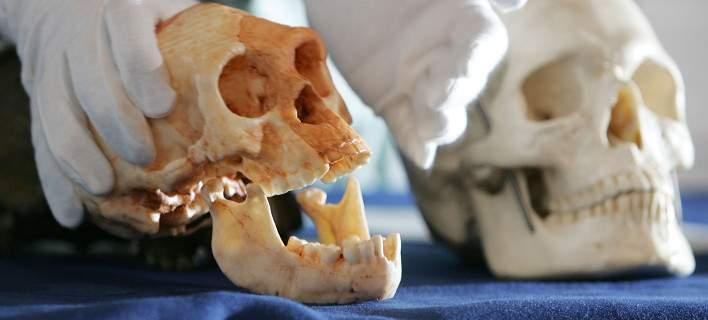 Ανακαλύφθηκαν τα αρχαιότερα μέχρι σήμερα απολιθώματα του Homo sapiens -Τουλάχιστον 300.000 ετών (Video)
